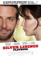 The Silver Linings Playbook (Silver Linings Playbook)
